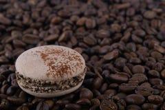 Gusto del caffè di Macaron sui grani marroni dell'arabica fotografia stock libera da diritti