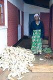 Gusu Village Elderly Woman Stock Images