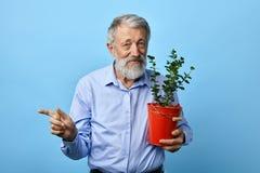 Gut aussehender Mann mit Blume in seinen Händen zeigend auf irgendwo, Kopienraum lizenzfreies stockbild
