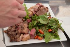 Gut-gekochtes Fleisch mit Kräutern und Tomaten auf einer Platte Lizenzfreies Stockfoto