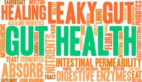 Gut Health Word Cloud. On a white background Stock Photography
