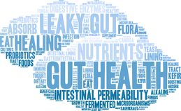 Gut Health Word Cloud. On a white background Stock Images