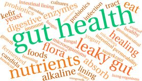 Gut Health Word Cloud. On a white background Royalty Free Stock Photos