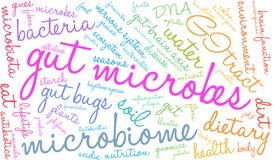 Gut Microbes Word Cloud. On a white background Stock Images