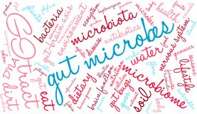 Gut Microbes Word Cloud. On a white background Stock Photography