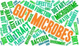 Gut Microbes Word Cloud