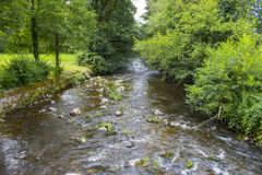 Gutach river in Black Forest in Germany Stock Photo