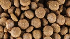 Gute knusprige Kekse für Hunde stock video