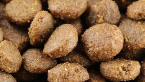 Gute knusprige Kekse für Hunde stock video footage
