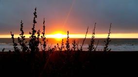 Gute Nacht Sonne stockbild
