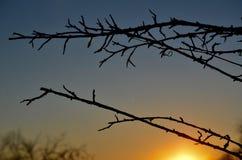Gute Nacht Sonnenlicht in NH Lizenzfreies Stockfoto