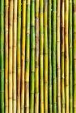 Gute Qualitätsnatürliche Bambusbeschaffenheit Lizenzfreie Stockfotografie