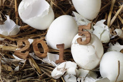 Guten Rutsch ins Neue Jahr 2015 auf einem Nest des Heus Lizenzfreie Stockfotos