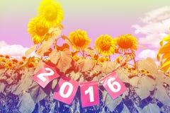 Guten Rutsch ins Neue Jahr 2016 auf Sonnenblumenfeld, Willkommen 2016 Lizenzfreies Stockbild