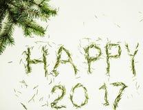 Guten Rutsch ins Neue Jahr-Design auf weißem Hintergrund mit Kiefer und Text Lizenzfreies Stockfoto