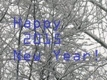2015-guten Rutsch ins Neue Jahr-Gruß Lizenzfreies Stockfoto