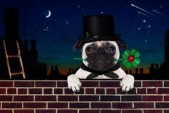 Guten Rutsch ins Neue Jahr-Hund-celberation Lizenzfreie Stockfotos