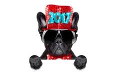 Guten Rutsch ins Neue Jahr-Hund-celberation Stockfotografie