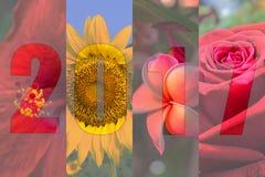 Guten Rutsch ins Neue Jahr 2017 im Blumen-Thema Lizenzfreie Stockfotos