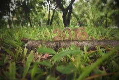 Guten Rutsch ins Neue Jahr 2016, Naturkonzept und Holz nummeriert Idee Lizenzfreie Stockfotos