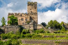 Gutenfels Castle and vineyards at Rhine Valley near Kaub, Germany. Stock Photo