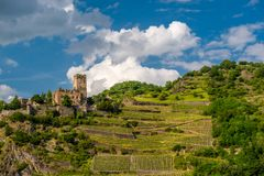 Gutenfels Castle and vineyards at Rhine Valley near Kaub, Germany. Gutenfels Caub Castle and vineyards at Rhine Valley Rhine Gorge near Kaub, Germany. Built in stock photos