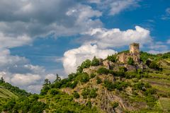 Gutenfels Castle and vineyards at Rhine Valley near Kaub, Germany. Stock Photography