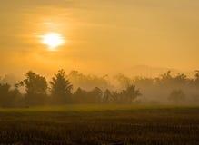 Gutenmorgen Chiang Mai Stockfotografie