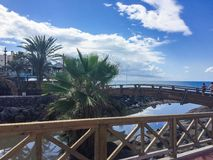 Gutenmorgen zu Teneriffa!!! Stockfotos