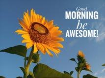 Guter Morgen des Morgeninspirierend Motivzitats, ehrfürchtig sein Mit einer schönen lächelnden Sonnenblumenblüte und einem blauen lizenzfreie stockbilder