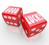 Gutes Glück-roter Würfel fasst vorteilhaftes Vermögen ab stock abbildung