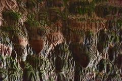 Gutmanis grotta, Lettland Fotografering för Bildbyråer