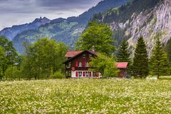 Gutshaus auf dem Blumen-Gebiet die Schweiz, bewölkter Frühlingstag Lizenzfreie Stockfotografie