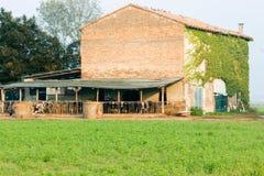Gutshaus mit Kühen und runden Heuballen stockfotografie