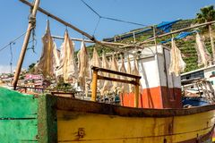 Drying catfish. Gutted catfish left out to dry in the Madeiran sun royalty free stock photos