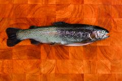 Gutted trout. Fresh gutted trout on a wooden board Stock Image