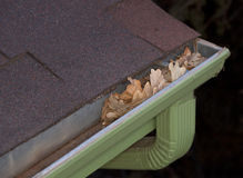 Gutter blocked by dry leaves Stock Photo