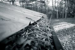 Gutters full of debris needing to be cleaned stock images