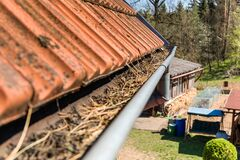 Free Gutters Full Of Debris Needing To Be Cleaned. Roof Gutter Clogged With Pine Needles And Debris. Work On The House Royalty Free Stock Photography - 179997167