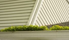 Gutters with Plants stock photography