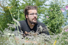 Guy with the beard in the meadow Stock Photography