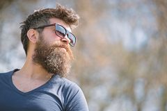 Guy with beard wears sunglasses. Hipster with beard and mustache on strict face, nature background, defocused. Man with. Beard looks stylish and confident on royalty free stock photo