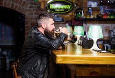 Guy bearded man sit at bar counter in pub. Man with beard spend leisure in dark pub. Brutal hipster relaxing. Weekend. Lifestyle. Pub great place to dine drink royalty free stock photos