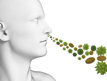 Guy breathing pollen Stock Photography