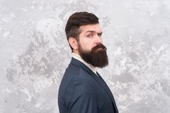 Guy brutal fashion model with long beard and mustache. Business people fashion style. Facial hair and grooming. Man. Handsome bearded businessman wear formal royalty free stock photos