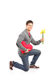Guy crouching down on his knee with a bunch of tulips. Isolated on white background Stock Photo