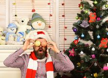 Guy Decorates Christmas Tree. Festivals And Decor Concept. Stock Images