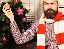 Guy decorates Christmas tree. Santa Claus with confused face. On wooden wall background. Man with beard in checkered shirt holds golden Christmas ball royalty free stock images