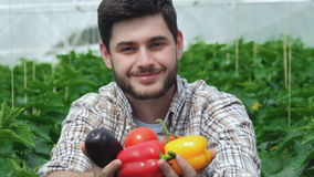 Guy demonstrates the organic vegetables directly stock video footage