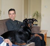 Guy with a Doberman Stock Photos